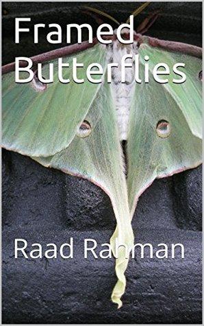 Framed Butterflies by Raad Rahman