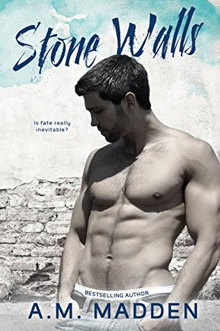 Stone Walls: an FBI Romantic Suspense Novel