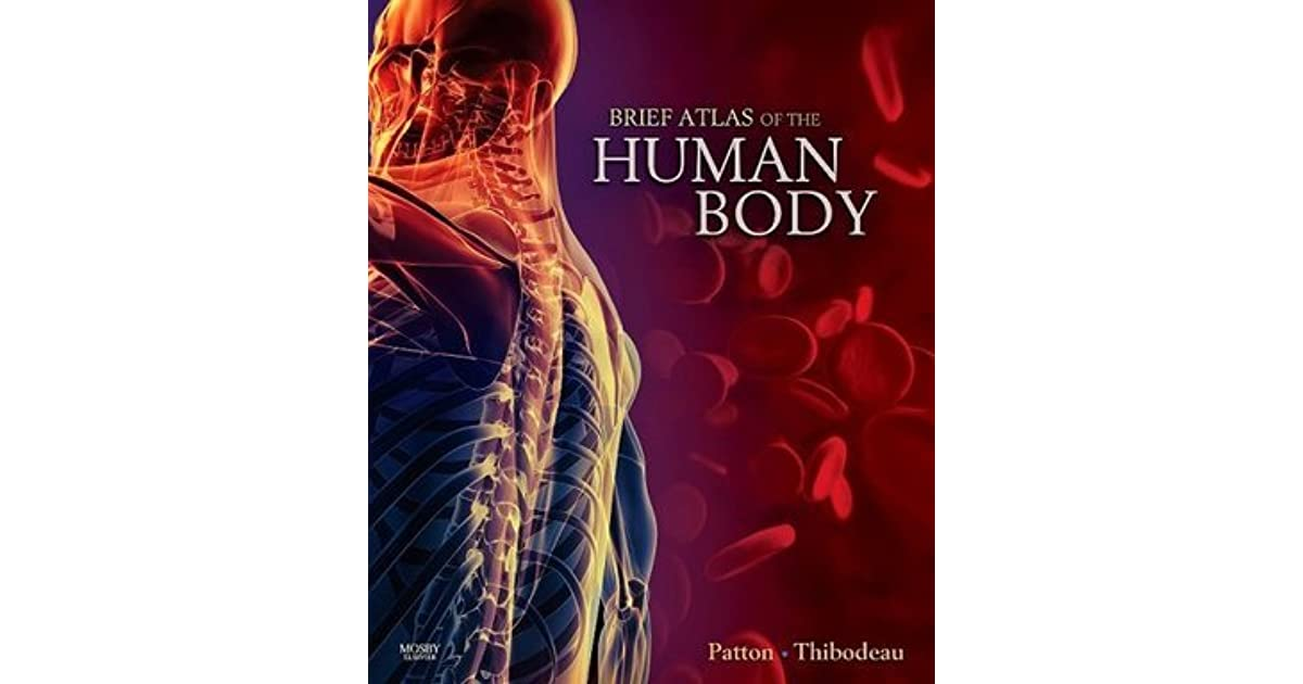 Attractive Patton And Thibodeau Anatomy And Physiology Image ...