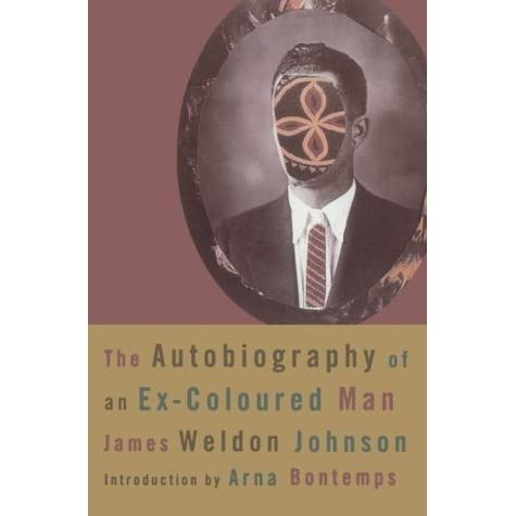 a book analysis of james johnsons autobiography of an ex colored man