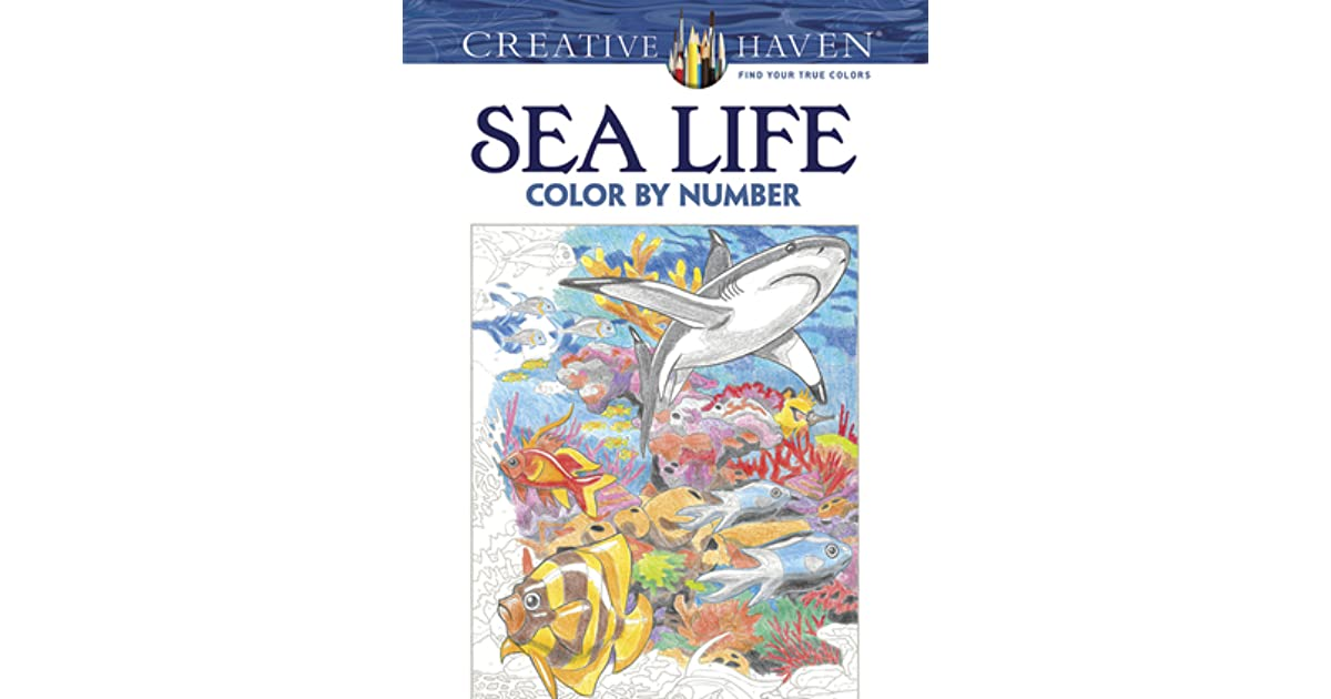 Creative Haven Sea Life Color By Number Coloring Book George Toufexis
