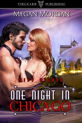 One Night in Chicago (City Nights, #12)