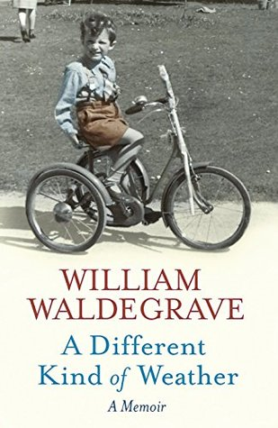 A Different Kind Of Weather by William Waldegrave