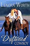 The Southern Cowboy (Driftwood Bay #1)