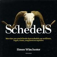Schedels : de schedelverzameling van Alan Dudley