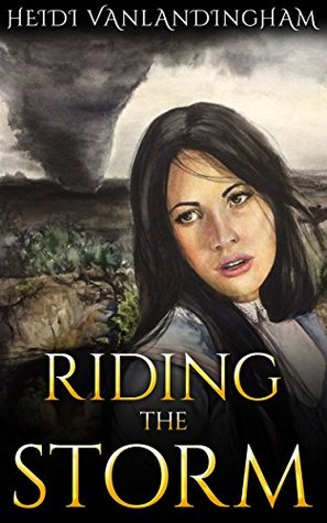 Riding The Storm by Heidi Vanlandingham
