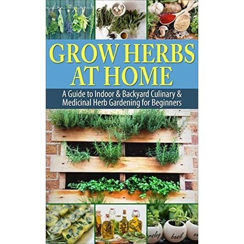 Grow Herbs At Home A Guide To Indoor Backyard Culinary