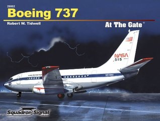 Boeing 737 at the Gate