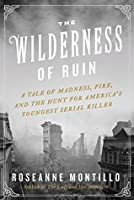 The Wilderness of Ruin: A Tale of Madness, Fire, and the Hunt for America's Youngest Serial Killer