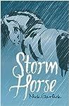Storm Horse