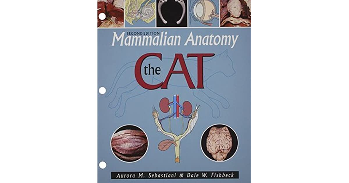Mammalian Anatomy: The Cat by Aurora M. Sebastiani