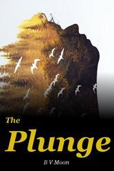 The Plunge by B.V. Moon