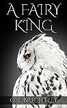 A Fairy King (Fairy King, #1)