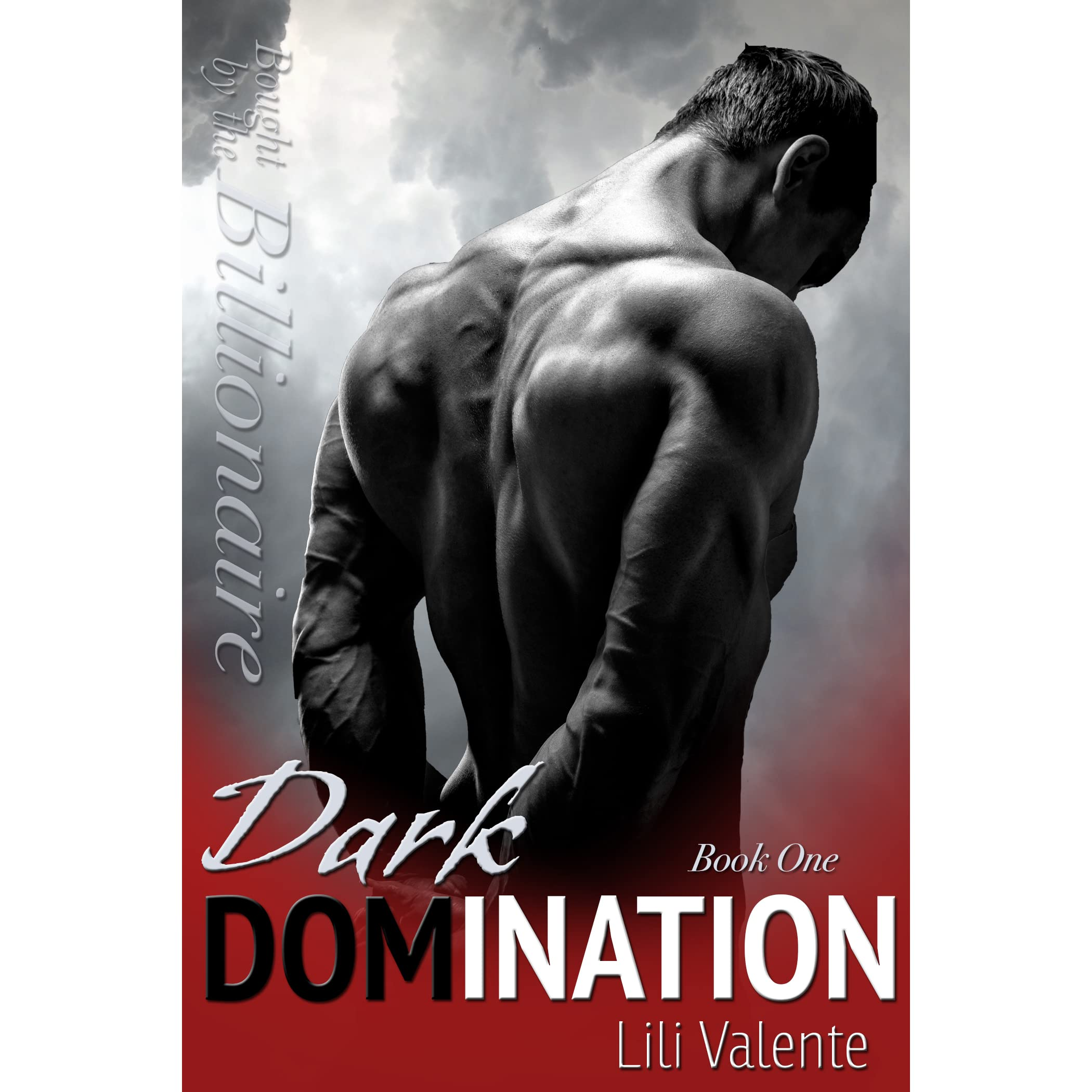 best domination novels