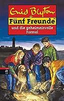 Fünf Freunde und die geheimnisvolle Formel (Fünf Freunde, Neubearb., Bd. 25)