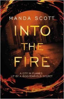 Into the Fire (Capitaine Inés Picaut, #1)