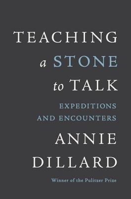 Teaching a Stone to Talk by Annie Dillard