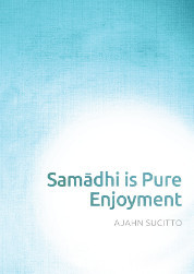 Samādhi is Pure Enjoyment