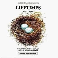 Lifetimes: Beginnings and endings with Lifetimes in Between