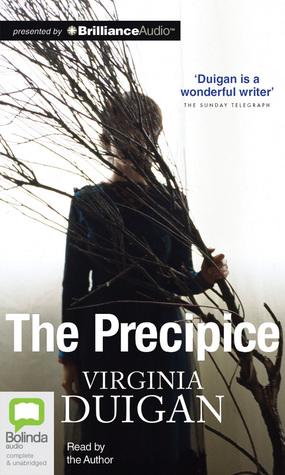 The Precipice by Virginia Duigan