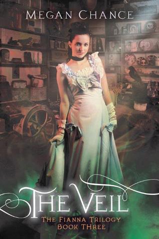 The Veil by Megan Chance