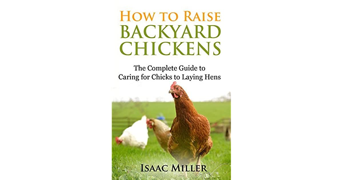 How To Raise Backyard Chickens: The Complete Guide to ...