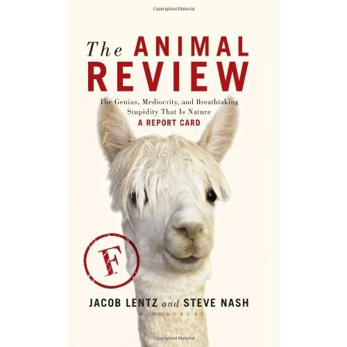 The Animal Review: The Genius, Mediocrity, and Breathtaking