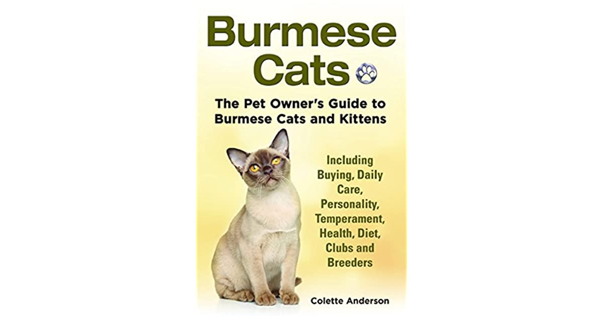 Burmese Cats The Pet Owner S Guide To Burmese Cats And Kittens Including Buying Daily Care Personality Temperament Health Diet Clubs And Breeders By Colette Anderson