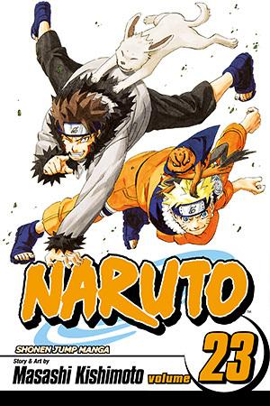 Naruto, Vol. 23: Predicament