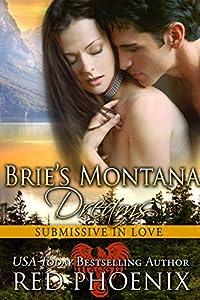 Brie's Montana Dreams