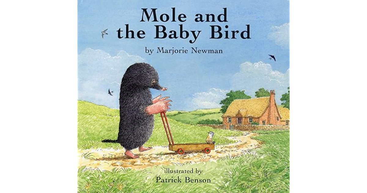 Mole Cant See (Owl and Friends Book 2)