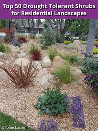 Top 50 Drought Tolerant Shrubs for Residential Landscapes