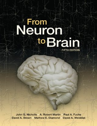 From Neuron to Brain/ Neurons in Action Version 2 by John G. Nicholls
