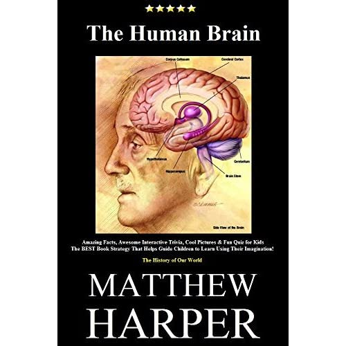 THE HUMAN BRAIN: A Fascinating Book Containing Human Brain Facts ...