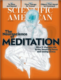 Scientific American - November - Scientific American a division