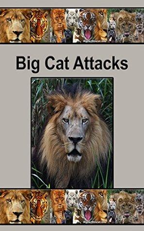 Big Cat Attacks: Accounts of Big Cat Attacks