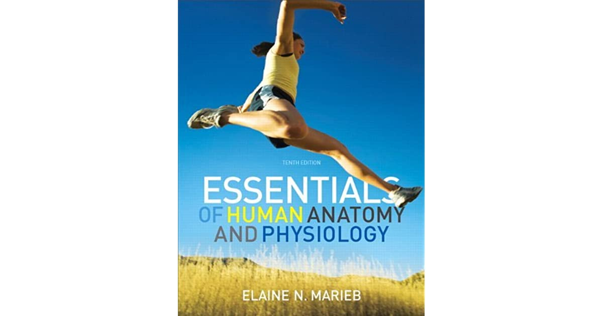 Essentials of Human Anatomy &Physiology by Elaine N. Marieb