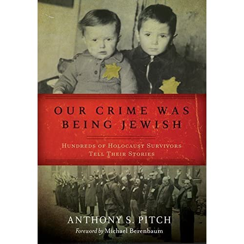 research essay on the jewish holocaust