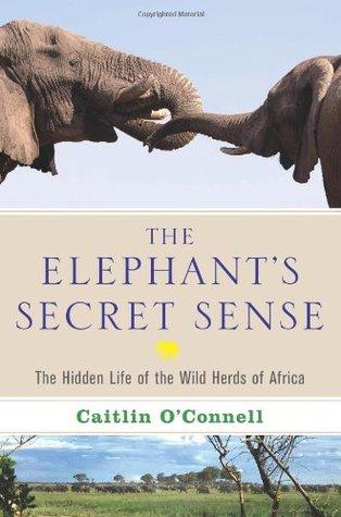 The Elephant's Secret Sense: The Hidden Life of the Wild Herds of Africa