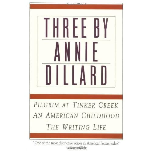 analysis of an american childhood by annie dillard Critical analysis #1 annie dillard's annie uses a first-person narrative to reveal the perspective of a annie dillard's memoir, an american childhood.
