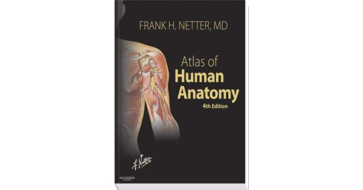 Atlas Of Human Anatomy By Frank H Netter