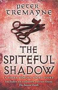 The Spiteful Shadow (Sister Fidelma, #25.5)