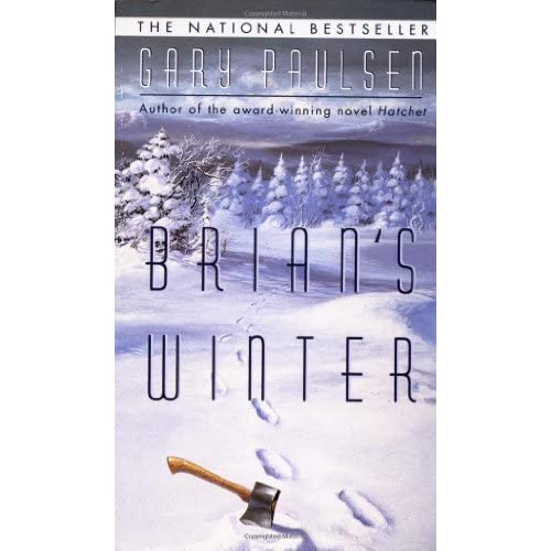 Brian's Winter by Gary Paulsen Comprehension Questions and ...