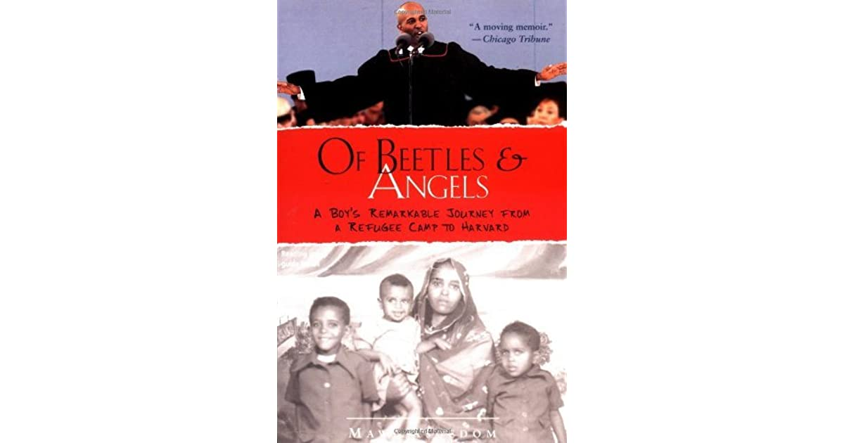 of beetles and angels