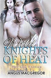Wild Knights Of Heat: Hart Mountain Hotshots, Book 6: GAY EROTICA