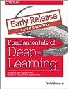 Fundamentals of D...
