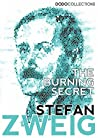 The Burning Secret (Stefan Zweig Collection)