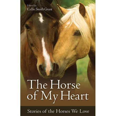The Horse Of My Heart Stories Of The Horses We Love By