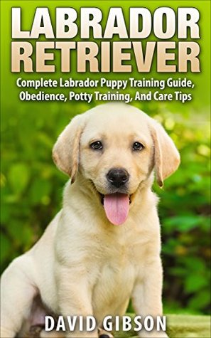 Labrador Retriever: Labrador Retriever Training - Complete