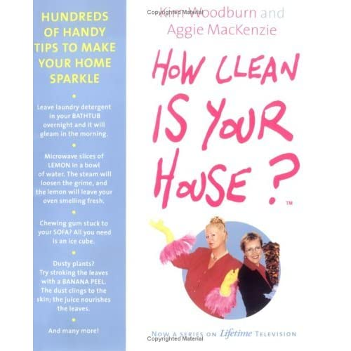 Kristina Cedar Springs Mi S Review Of How Clean Is Your House Hundreds Handy Tips To Make Home Sparkle